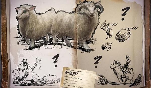 ark sheep diagram