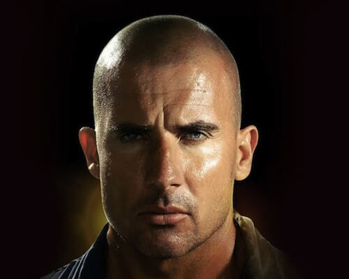 dominic-purcell-commander-shepard