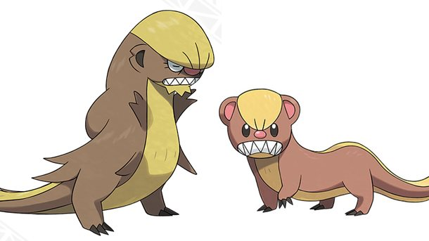 Pokémon Sun and Moon: Is Yungoos Based on Donald Trump? - Gumshoos and Yungoos