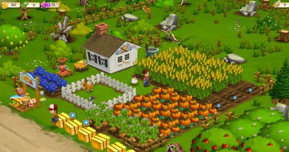 Zynga Big Harvest Farmville Screenshot
